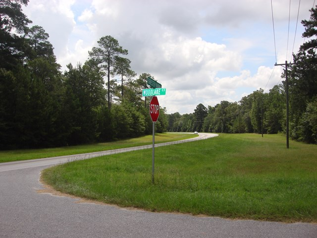 Lot 20 WOODLAKE COURT, Leesburg, Georgia image 3