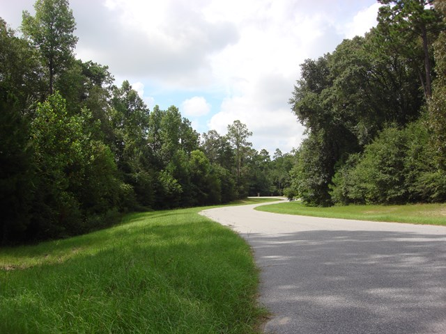 Lot 20 WOODLAKE COURT, Leesburg, Georgia image 5