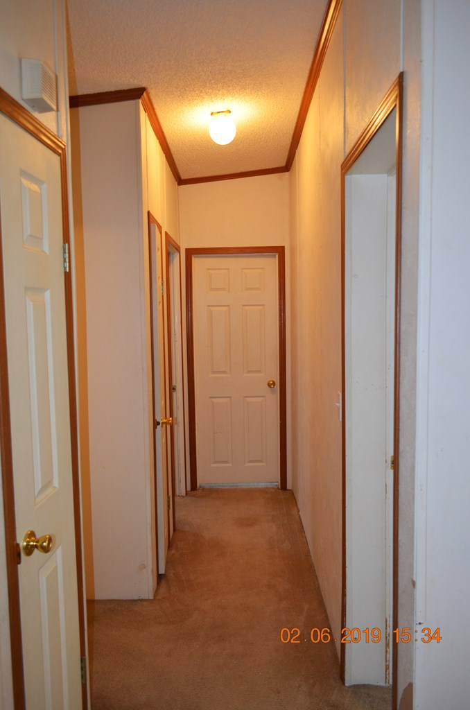 3752 Traverse Lane, Baconton, Georgia image 15