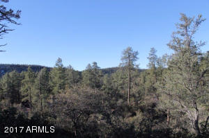 1100 S Sutton Road #312A, Payson, Arizona image 12