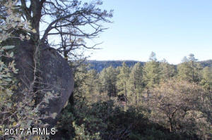 1100 S Sutton Road #312A, Payson, Arizona image 13