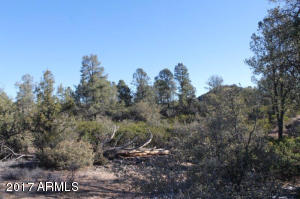 1100 S Sutton Road #312A, Payson, Arizona image 14