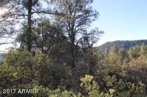 1100 S Sutton Road #312A, Payson, Arizona image 18