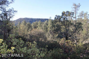 1100 S Sutton Road #312A, Payson, Arizona image 19