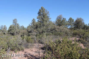 1100 S Sutton Road #312A, Payson, Arizona image 21