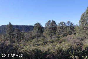 1100 S Sutton Road #312A, Payson, Arizona image 23