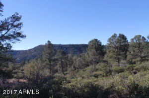 1100 S Sutton Road #312A, Payson, Arizona image 24