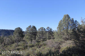 1100 S Sutton Road #312A, Payson, Arizona image 25