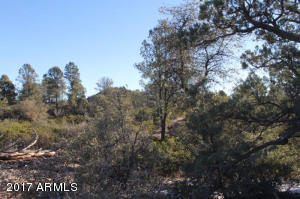1100 S Sutton Road #312A, Payson, Arizona image 27