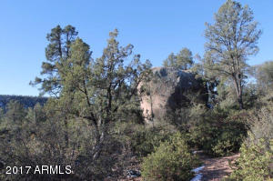 1100 S Sutton Road #312A, Payson, Arizona image 30