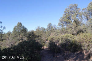 1100 S Sutton Road #312A, Payson, Arizona image 4