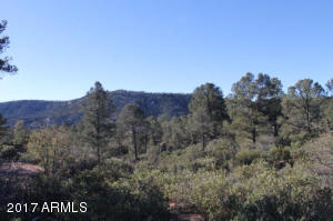 1100 S Sutton Road #312A, Payson, Arizona image 5
