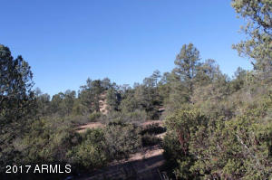 1100 S Sutton Road #312A, Payson, Arizona image 6