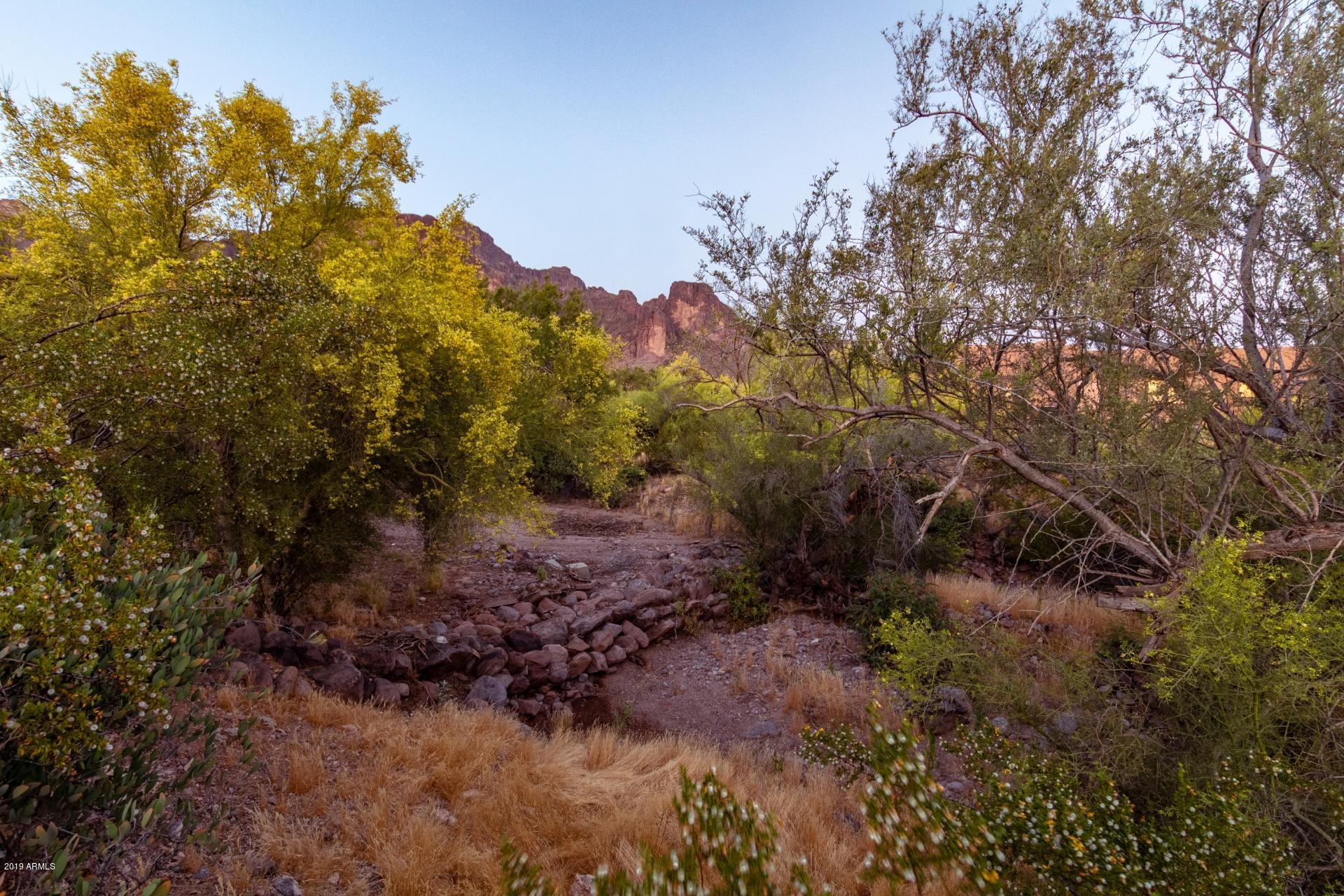 1791 N GERONIMO Road, Apache Junction, Arizona image 43