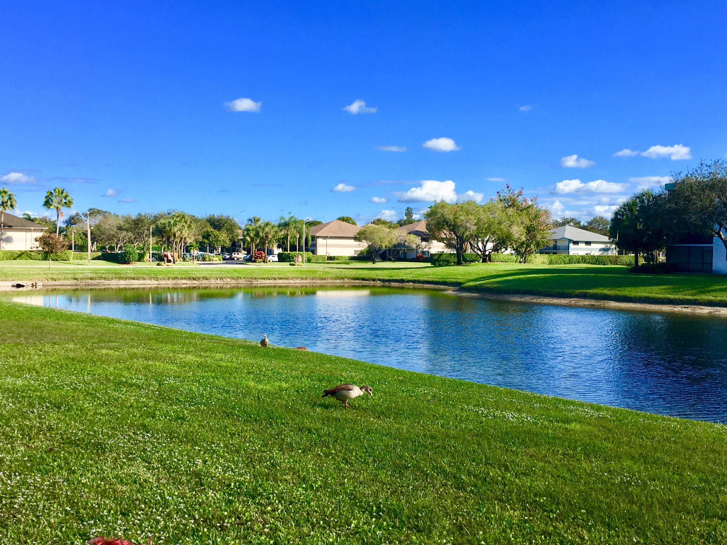 Lakes Of Delray Delray Beach Florida Homes For Sale By Owner Fsbo