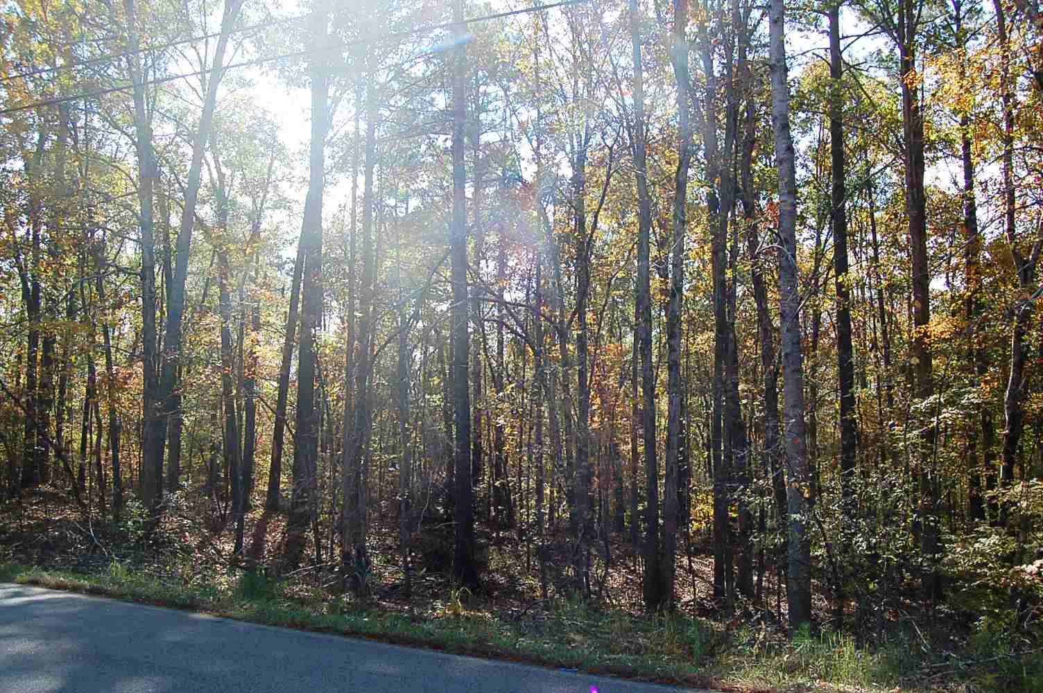 Lot 256 LITTLE RIVER TRAIL #256, Eatonton, Georgia image 1