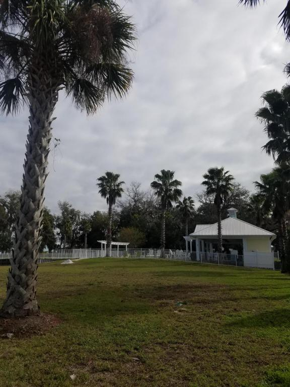 117 Yacht Club Point , GREEN COVE SPRINGS, Florida image 11