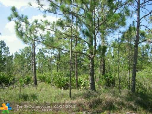 720 LAGUNA DRIVE, Other City - In The State Of Florida, Florida image 1