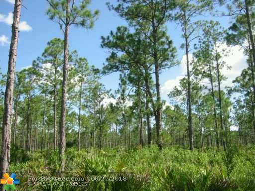 608 LAGUNA DRIVE, Other City - In The State Of Florida, Florida image 2