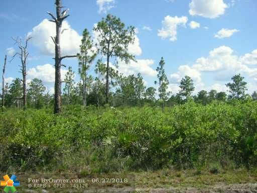 709 POINCIANA DRIVE, Other City - In The State Of Florida, Florida image 1