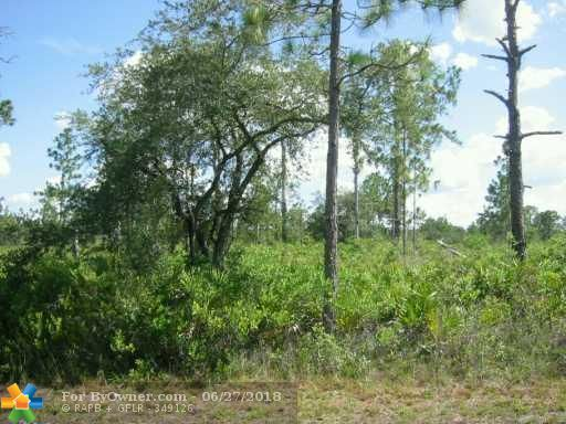 709 POINCIANA DRIVE, Other City - In The State Of Florida, Florida image 3