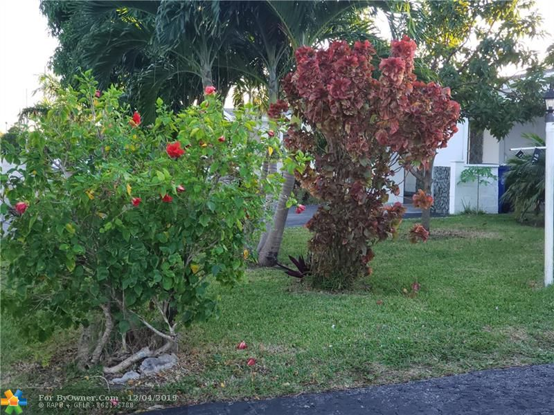 4215 NW 52nd Ave, Lauderdale Lakes, Florida image 6