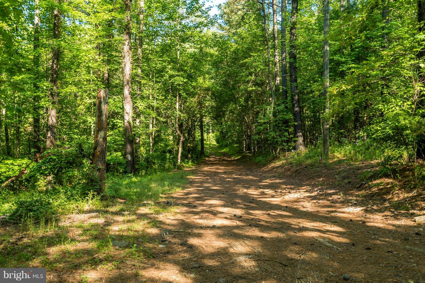 WEAVER HOLLOW ROAD , MADISON, Virginia image 13