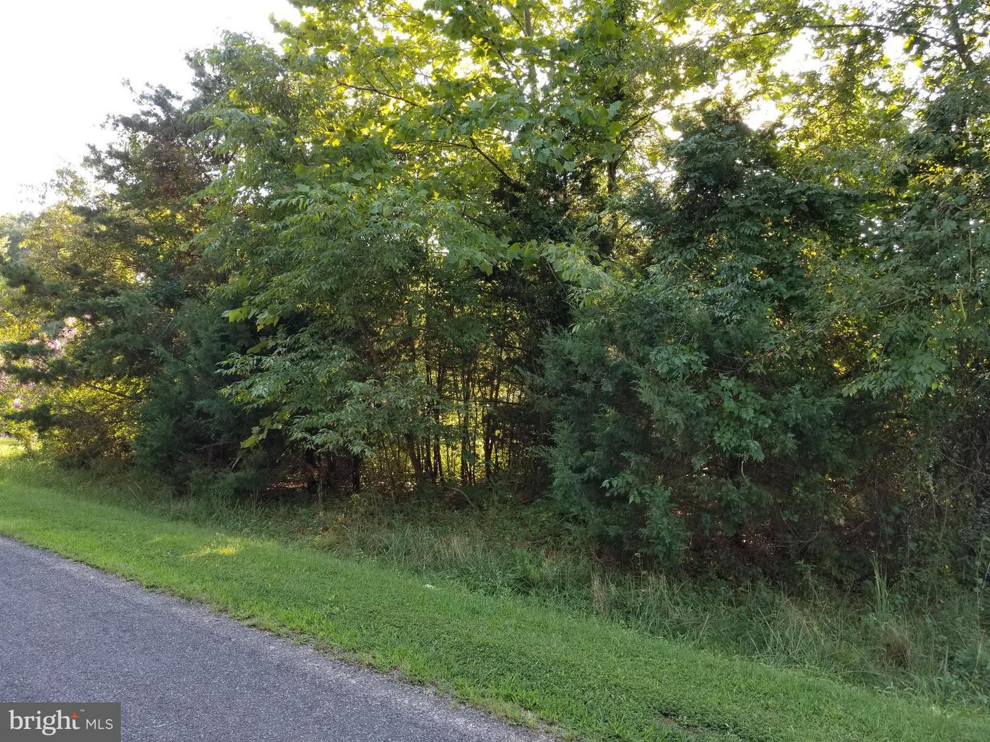 6112 EDS ROAD , MINERAL, Virginia image 16