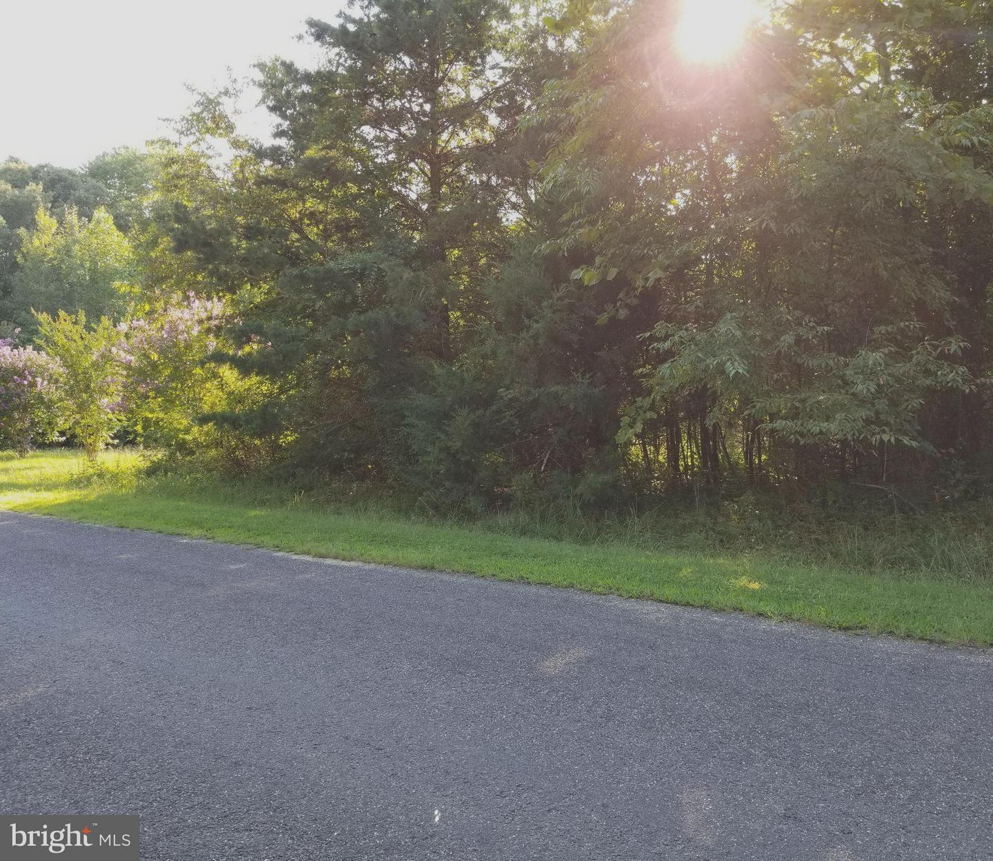6112 EDS ROAD , MINERAL, Virginia image 19