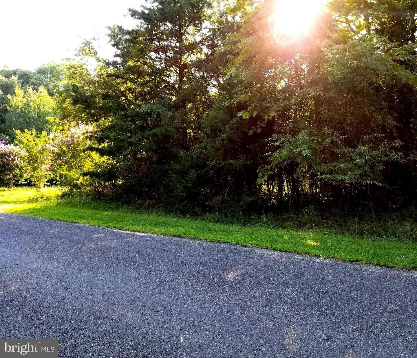 6112 EDS ROAD , MINERAL, Virginia image 21
