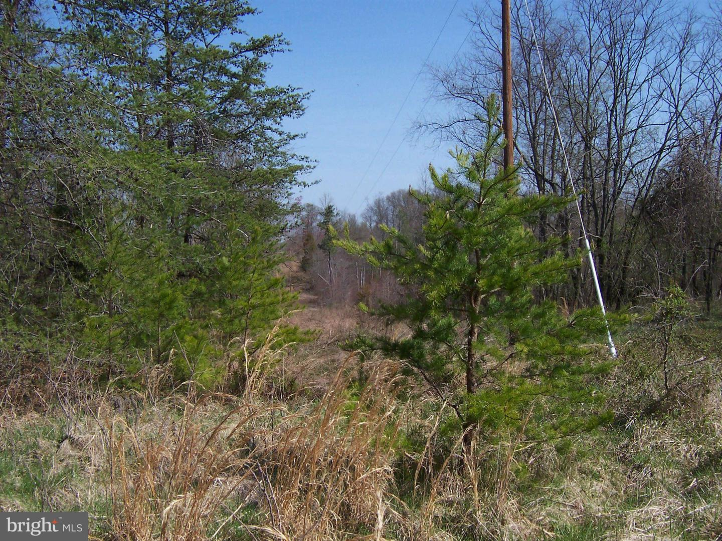 MARY LEE DRIVE , DOSWELL, Virginia image 6