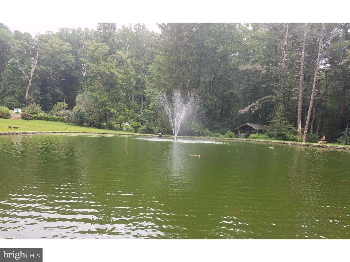Lot 16 WILD FOREST DRIVE , WERNERSVILLE, Pennsylvania image 5