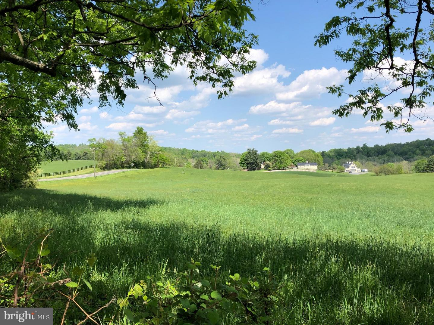 LOT 2A - Sally Mill Road SALLY MILL RD  , MIDDLEBURG, Virginia image 5